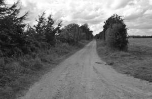 Vester Engvej fra Billundvej